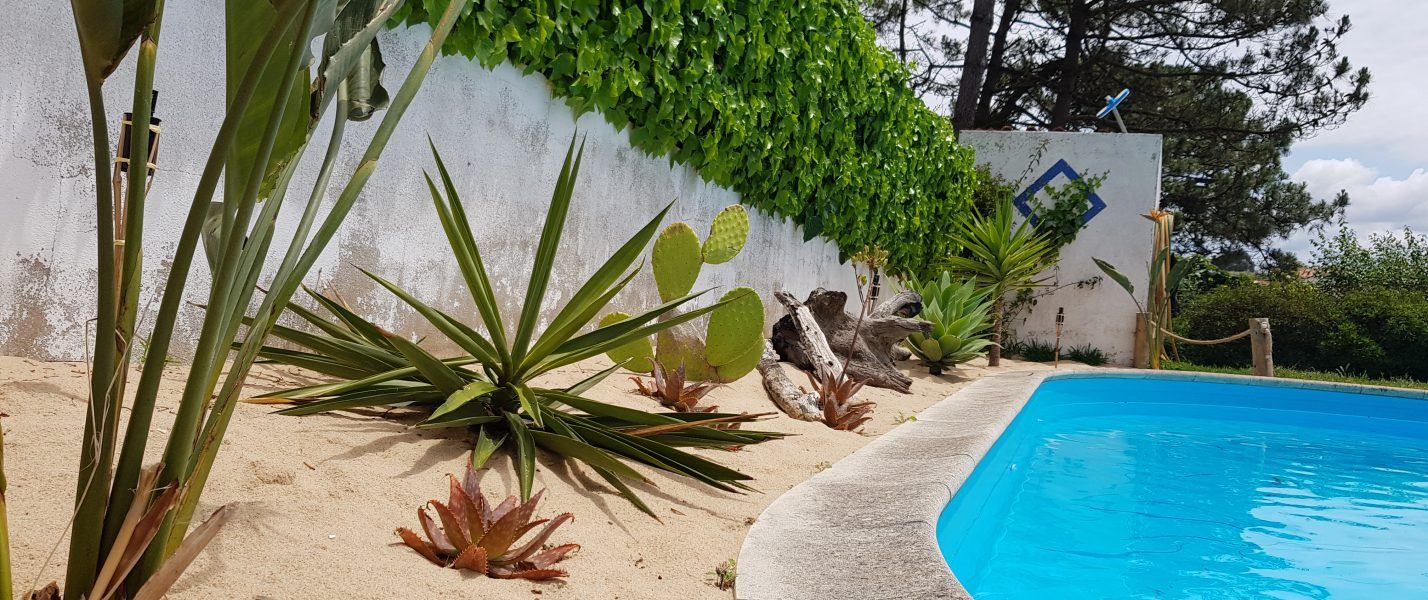 swimming pool house portugal vacation surf swim plants garden