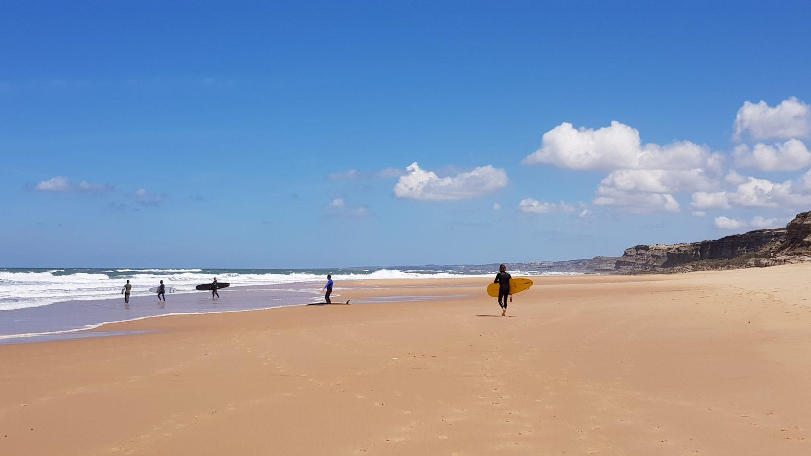 beach ocean surfing surfboards longboards waves