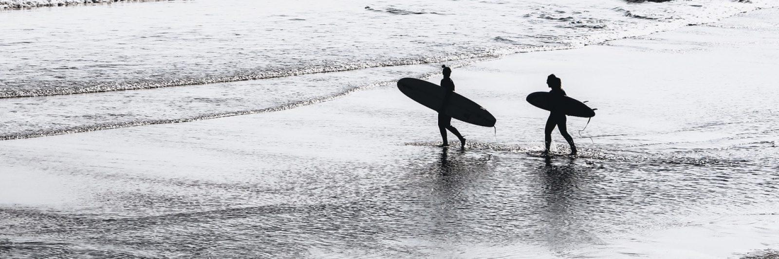longboard singlefin surf surfing ocean